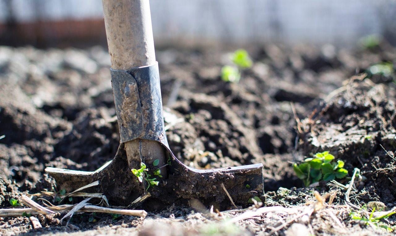 7 nezbytných jarních úklidových prací v zahradě